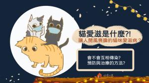 貓愛滋和人類的愛滋病一樣嗎?會不會互相傳染?有什麼方法預防與治療?